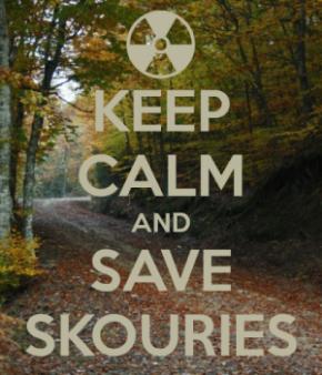 Skouries: une forêt ancienne devient la dernière bataille deGrèce