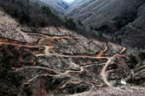 Σκουριές: παλεύοντας για το νερό, τον αέρα και το δάσος στην Ελλάδα τηςκρίσης