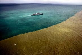 Βραζιλία: Η λάσπη των μεταλλευτικών αποβλήτων έφτασε στηθάλασσα